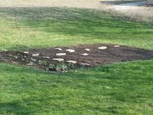 the start of a garden